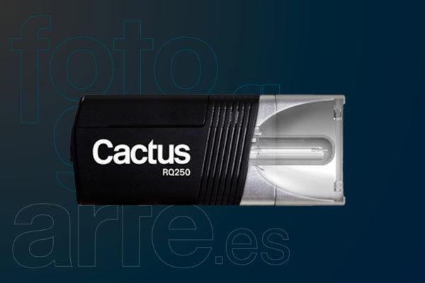 Flash Cactus RQ250
